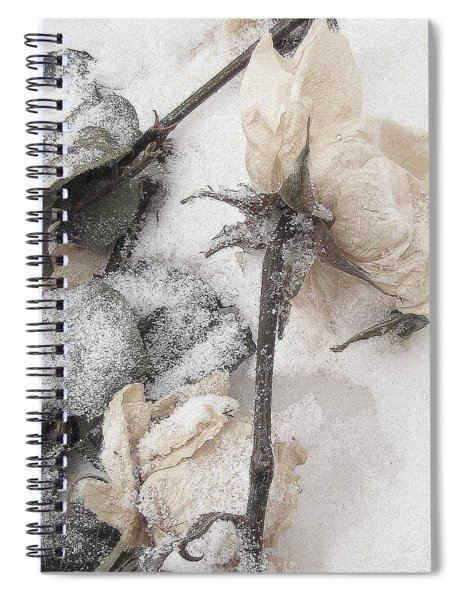 A Mystery Made Of Truth Spiral Notebook