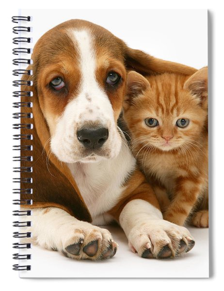 A New Meaning To Cat Flap Spiral Notebook