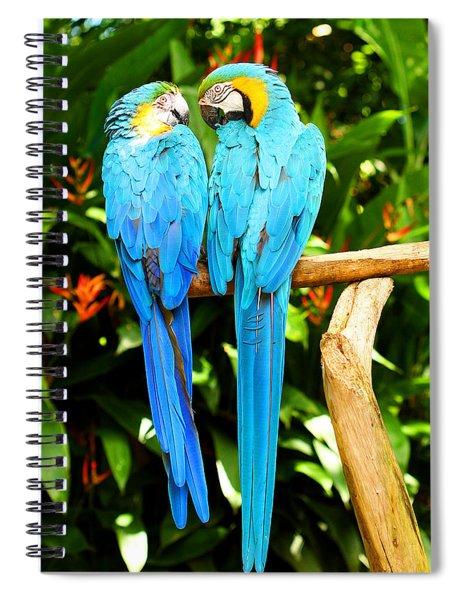 A Pair Of Parrots Spiral Notebook