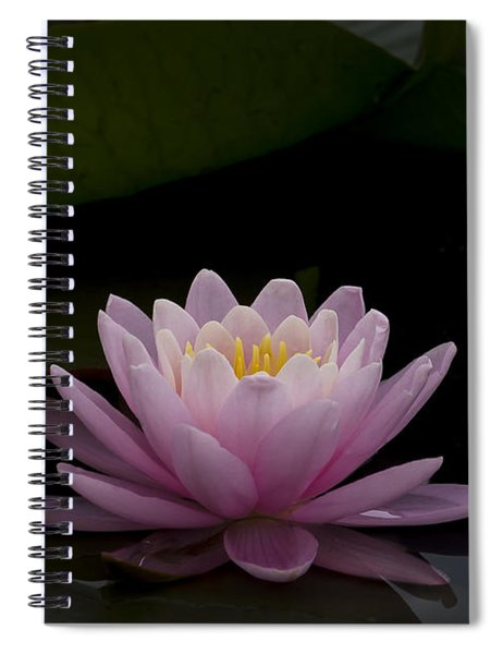 A Perfect Bloom Spiral Notebook