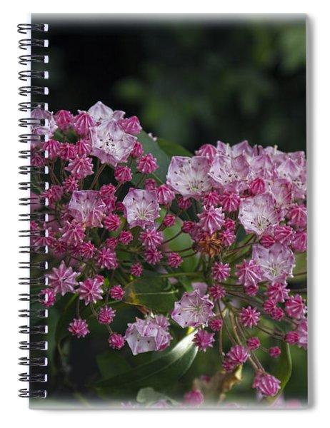 A Pink Bunch Spiral Notebook