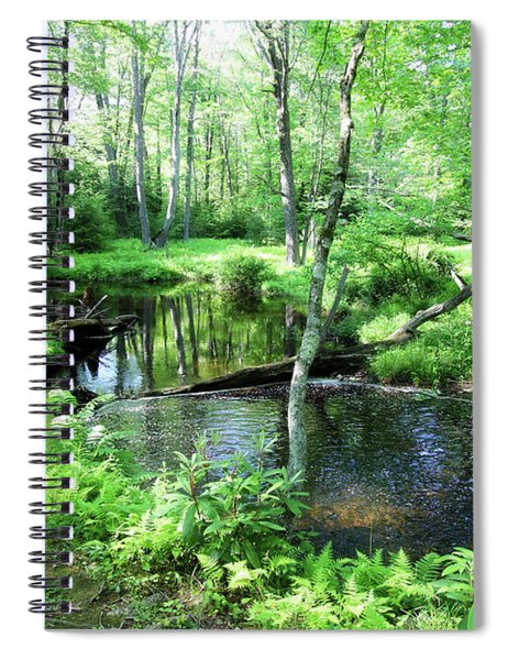 A Place Of Reflections Spiral Notebook