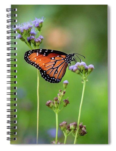 A Queen's Feast Spiral Notebook