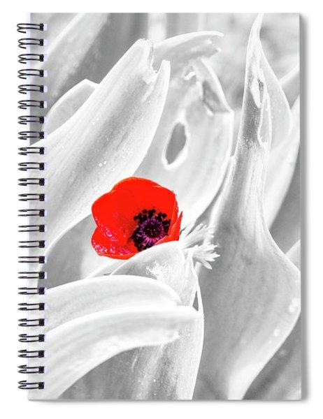 Spiral Notebook featuring the photograph A Red Dot by Arik Baltinester