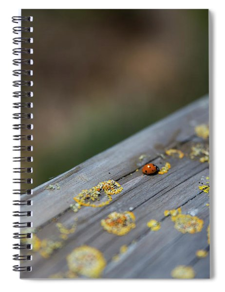 A Red Dot That Moves Spiral Notebook