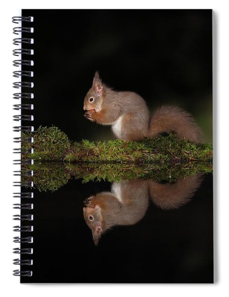 A Red Reflection Spiral Notebook