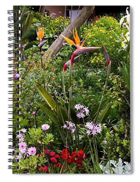 A Riot Of Flowers Spiral Notebook by Lorraine Devon Wilke