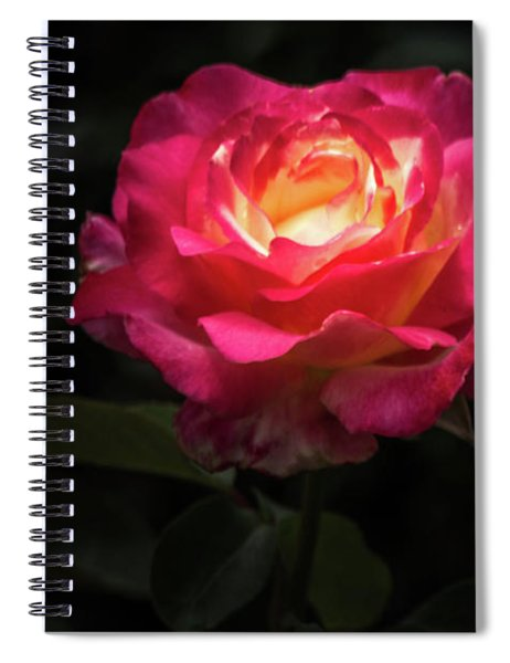 A Rose For Love Spiral Notebook