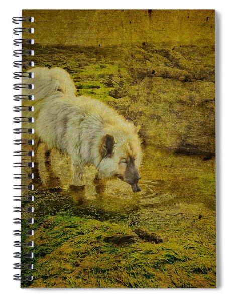 A Salted Thirst Spiral Notebook