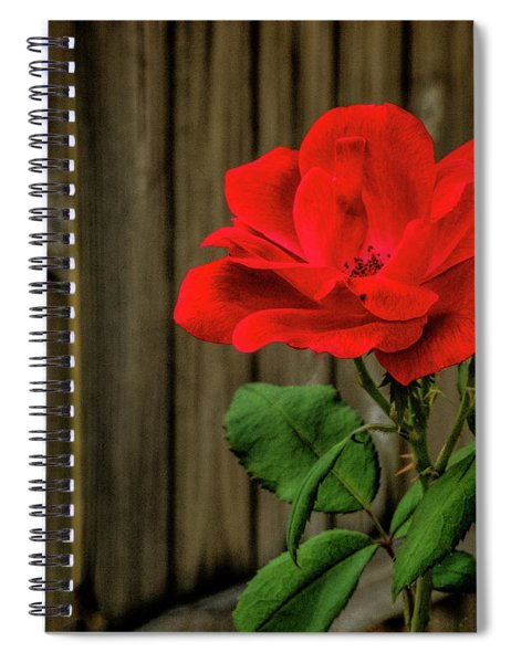 A Simple Beauty Spiral Notebook