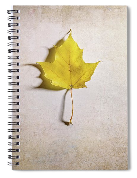 A Single Yellow Maple Leaf Spiral Notebook