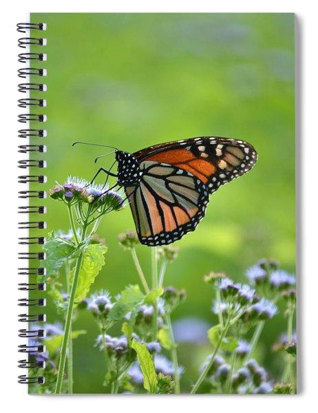 A Sip Of Mist Spiral Notebook