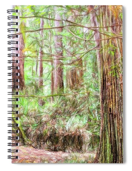 A Stand Of Redwood Trees. Spiral Notebook
