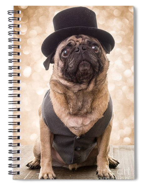 Spiral Notebook featuring the photograph A Star Is Born - Dog Groom by Edward Fielding