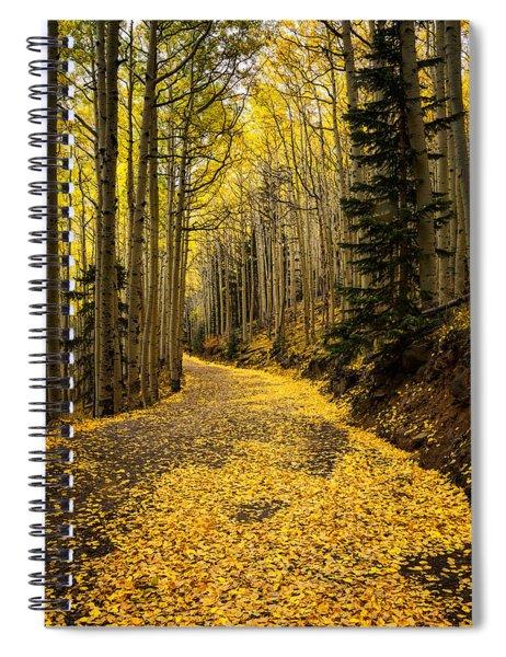 A Stroll Among The Golden Aspens  Spiral Notebook