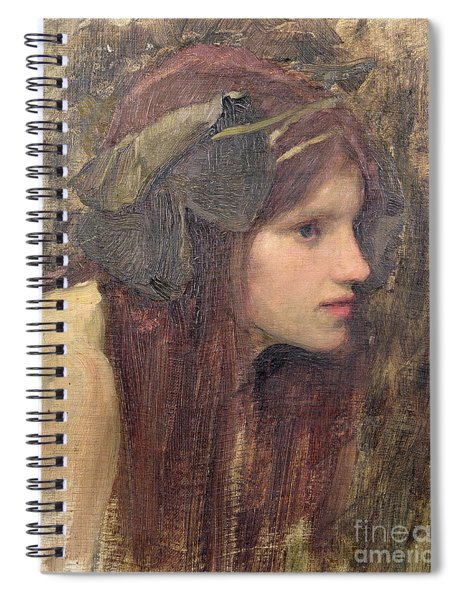A Study For A Naiad Spiral Notebook
