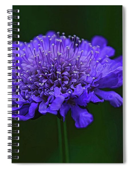 A Sweet Scabiosa Spiral Notebook
