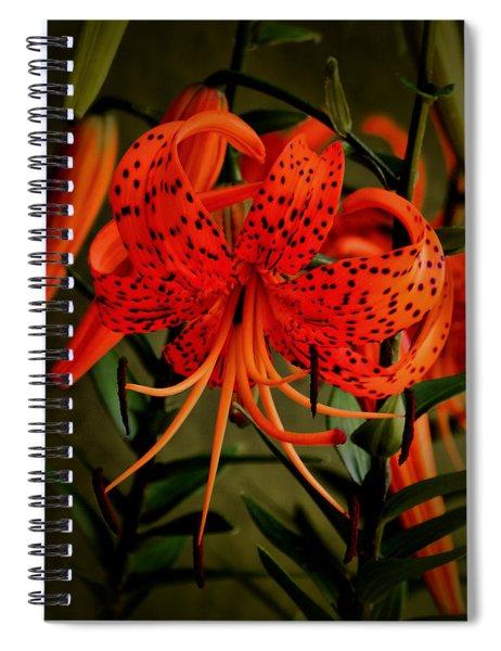 A Tiger Spiral Notebook