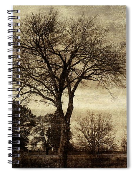 A Tree Along The Roadside Spiral Notebook
