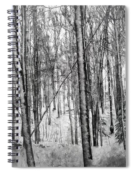 A Tree's View In Winter Spiral Notebook