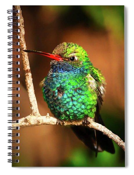 A Visual Feast Spiral Notebook