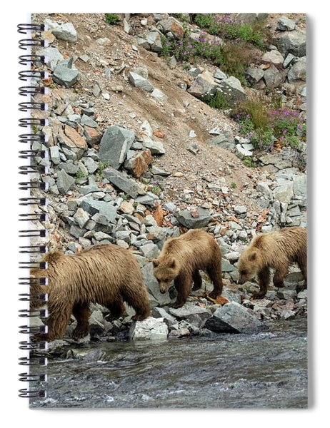 A Walk On The Wild Side Spiral Notebook