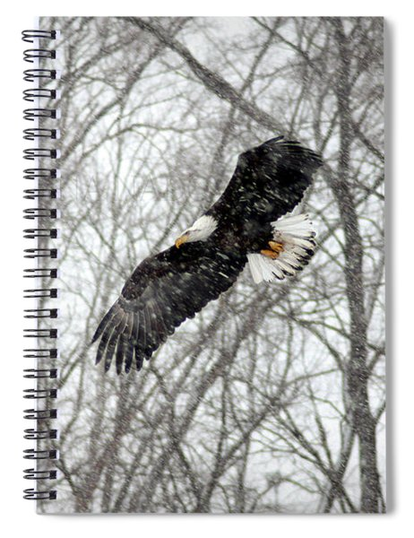 A Winter's Day Spiral Notebook