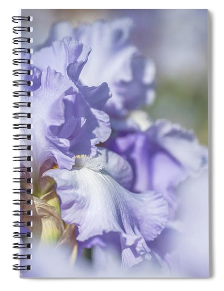 Absolute Treasure 1. The Beauty Of Irises Spiral Notebook