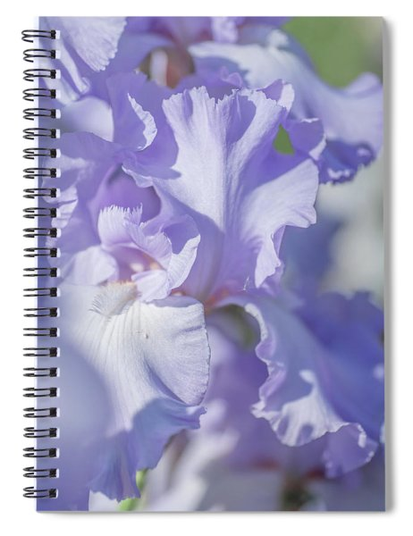 Absolute Treasure Closeup 2. The Beauty Of Irises Spiral Notebook