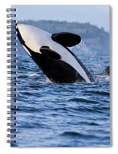 Absolutely Free - Whale Art Spiral Notebook