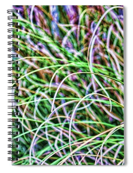 Abstract Grass Spiral Notebook