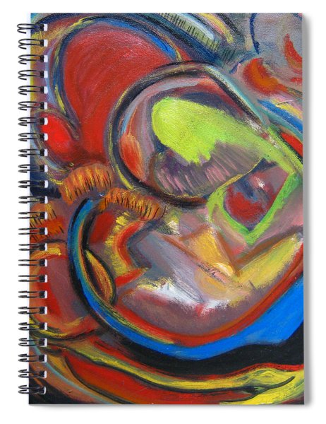 Abstract Life Spiral Notebook