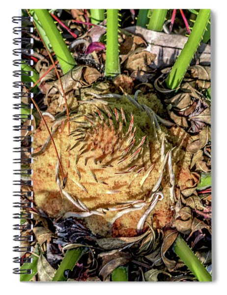 Abstract Nature Tropical Fern 2096 Spiral Notebook