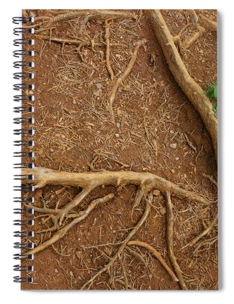 Abstract Roots Spiral Notebook