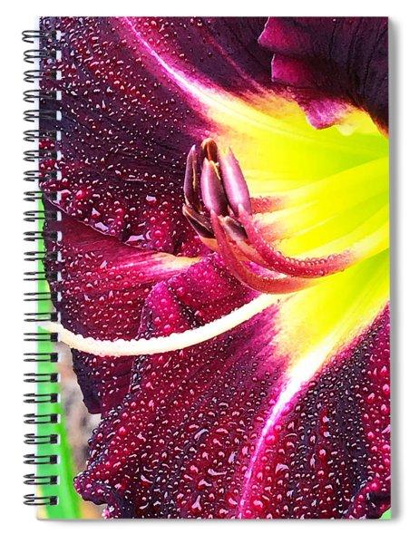 Achiltibuie Spiral Notebook