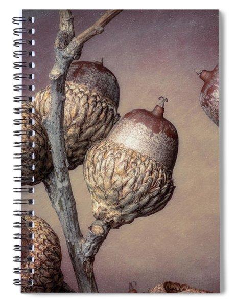 Acorn Branch Spiral Notebook