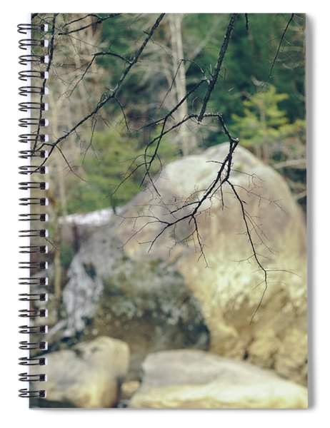 Across From Eagle Falls Spiral Notebook