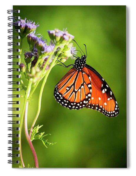 Addicted Queen Butterfly Spiral Notebook