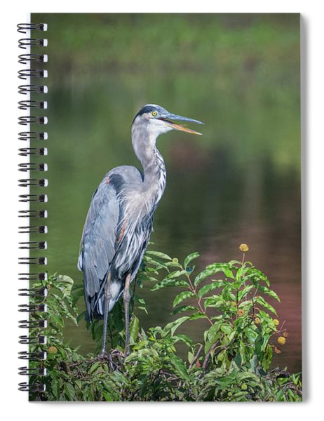 Advice From A Great Blue Heron Spiral Notebook