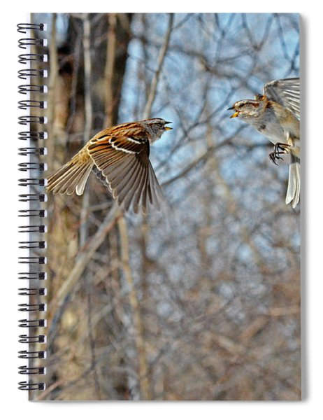 Aerial Battle Of The Forest Spiral Notebook