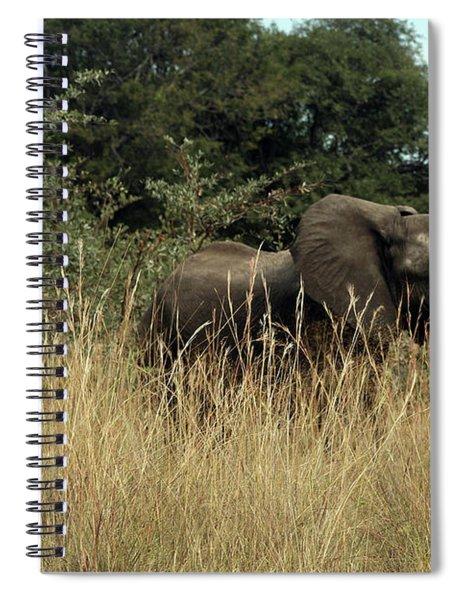 African Elephant In Tall Grass Spiral Notebook
