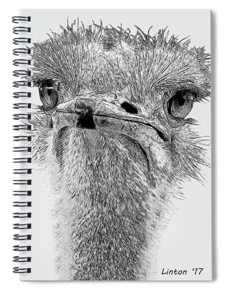 African Ostrich Sketch Spiral Notebook