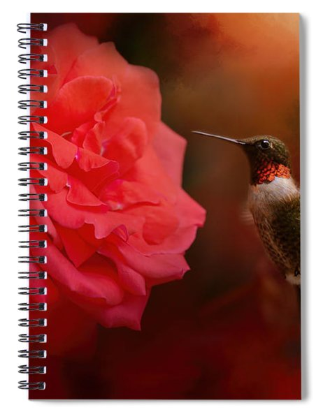 After The Big Rose Spiral Notebook