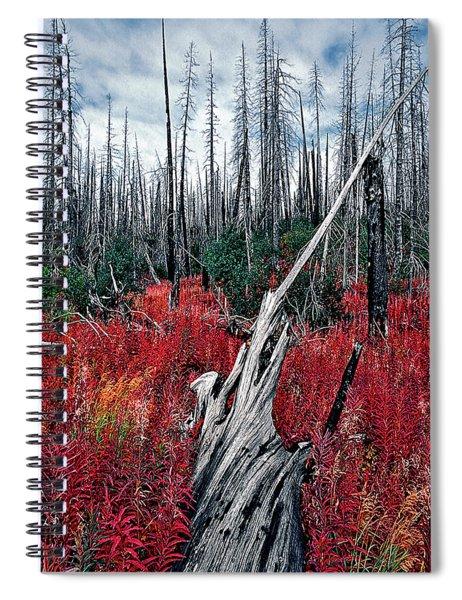 Afterburn Spiral Notebook