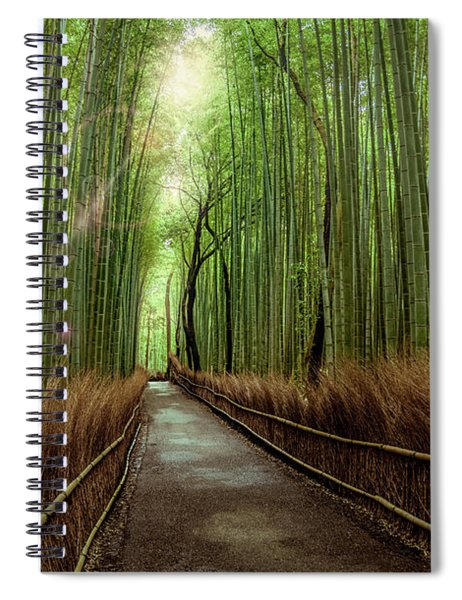 Afternoon In The Bamboo Spiral Notebook
