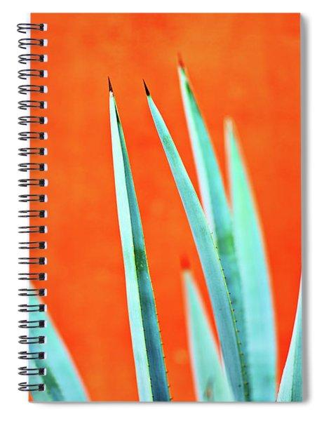 Agave 2 Spiral Notebook