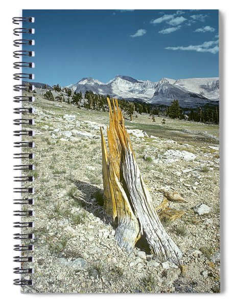 Aged To Perfection Spiral Notebook