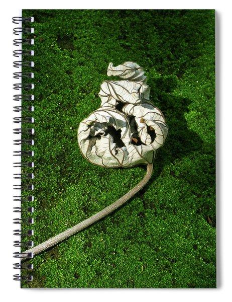 Aguished Leaf Spiral Notebook