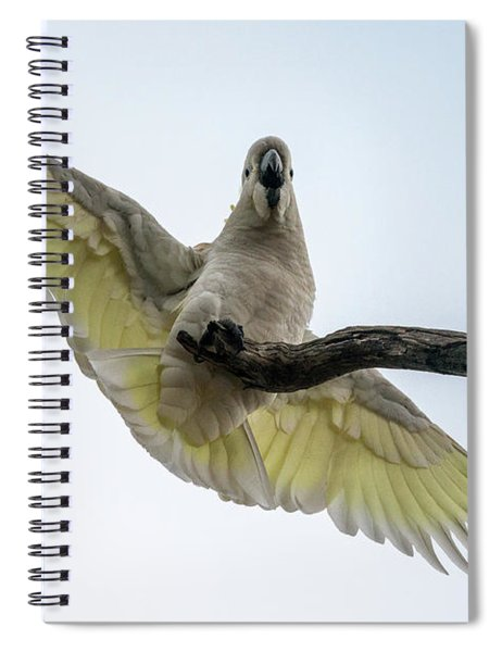 Ahoy Down There Spiral Notebook