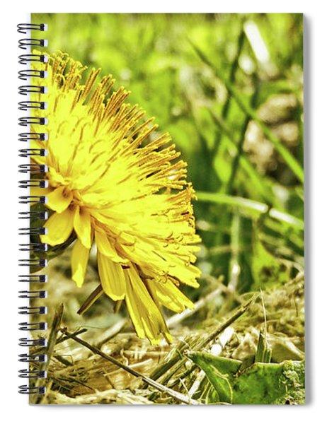Aim High Spiral Notebook